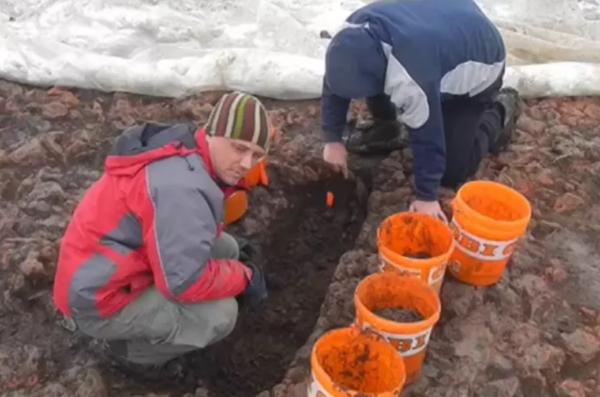 Men digging in wet soil with orange buckets